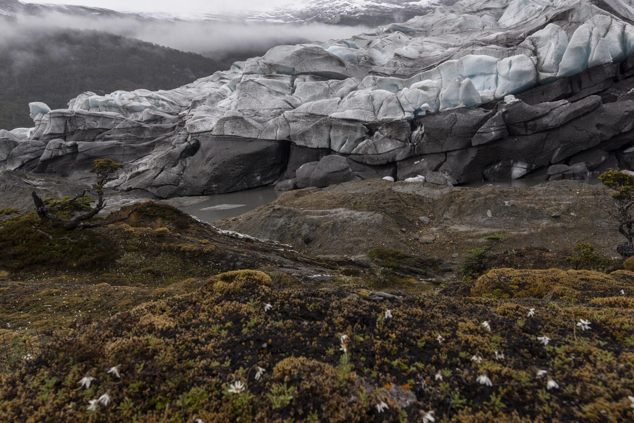 Glaciar Gallegos