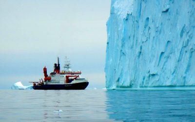 Vestiges of a rainforest in Antarctica