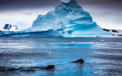 """A 104 años de la hazaña del """"piloto Pardo"""", el gran rescate en la Antártica"""