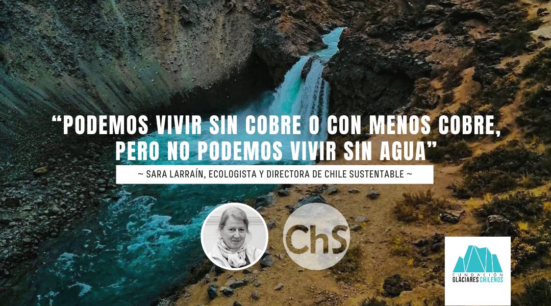 Entrevista a Sara Larraín, directora de Chile Sustentable