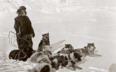 Roald Amundsen: El primer explorador en llegar al polo Sur geográfico