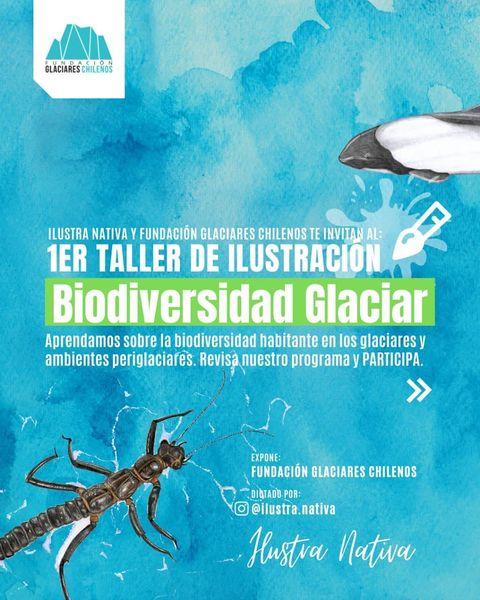 Ciclo Talleres de Ilustración Naturalista: Biodiversidad Glaciar y Periglaciar