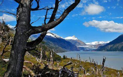 Proyecto Turístico de Longueira amenaza los glaciares de la Patagonia Chilena
